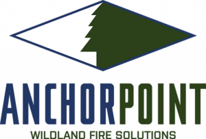 AnchorPoint Group